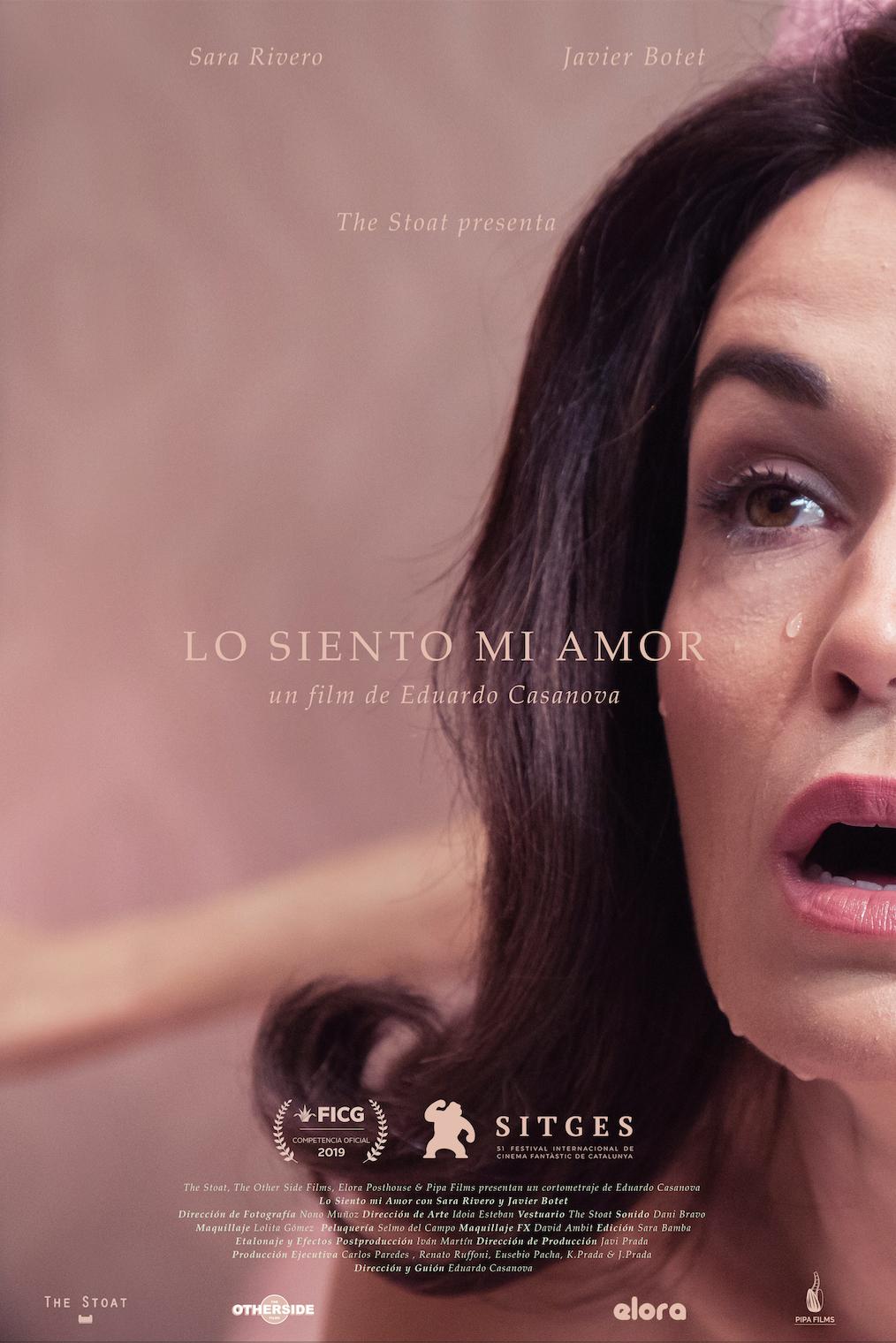 Lo siento mi amor - Sara Rivero